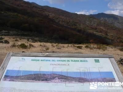 Paseo por el Hayedo de Tejera Negra - Senderismo Cantalojas, Guadalajara; senderismo por asturias